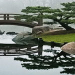 Elements of Japanese gardens