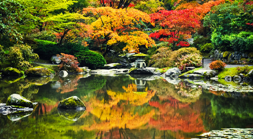Get inspired by Japanese gardens