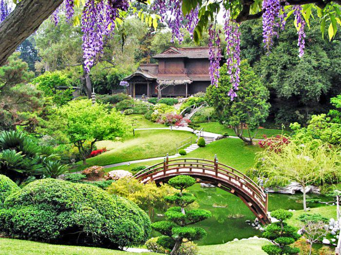 Zahrada po Japonsku